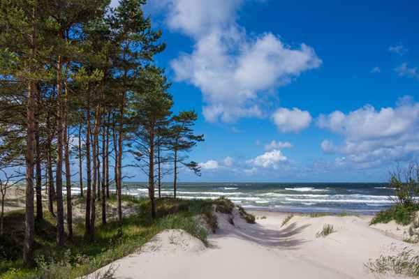 Wynajmij apartament przy plaży i jedź po zdrowie!